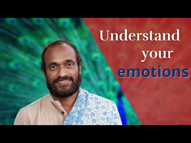 What are emotions?  Live satsang Vijay Gopala, 5th of May 2019