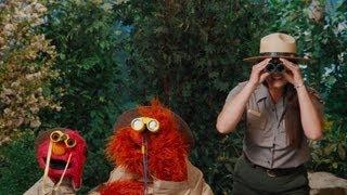 Sesame Street: Grand Canyon Families