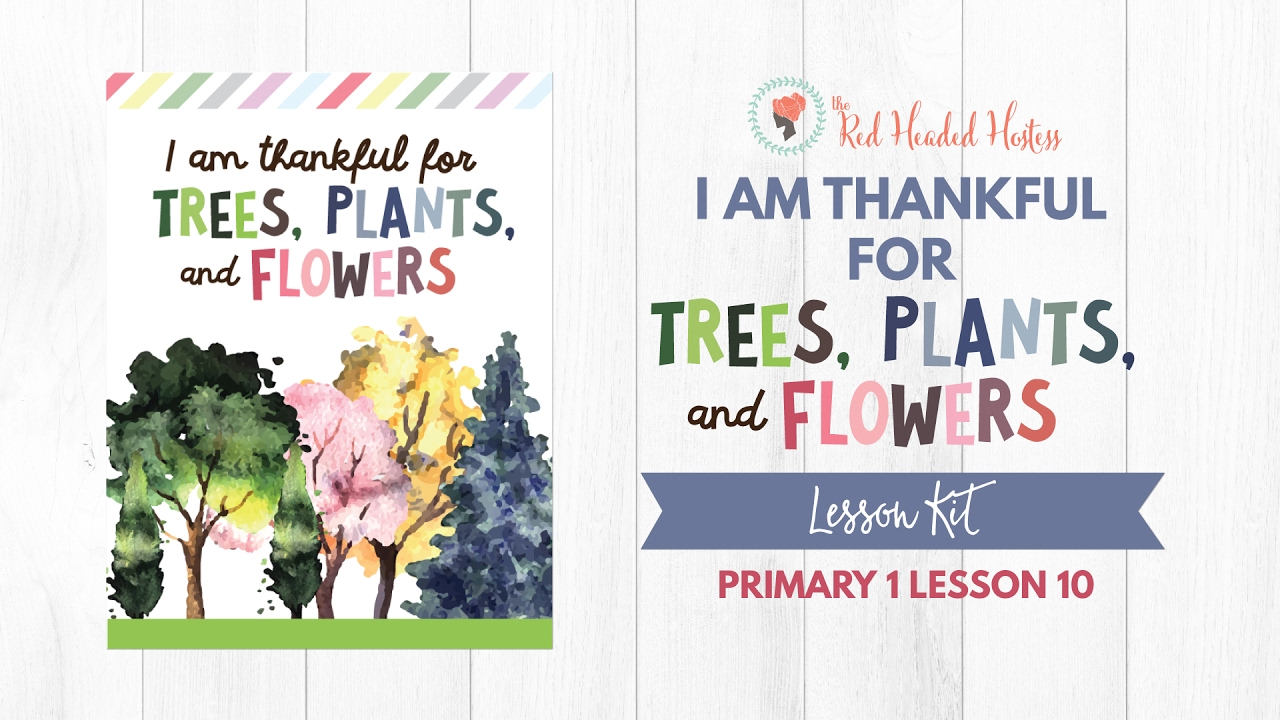 Primary 1 Lesson 10 I Am Thankful For Trees And Flowers Youtube