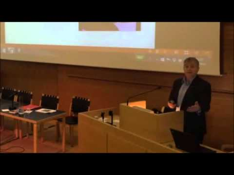 Knut Storberget in Iceland on NGO's: Red Cross 'Nettverk etter soning' and Salvation Army