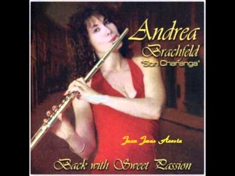 La Flauta de Andrea   Andrea Brachfeld