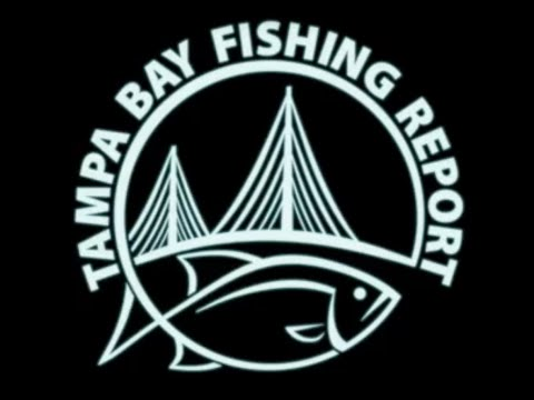 Tampa Bay Fishing Report ~ Inshore ~ Offshore