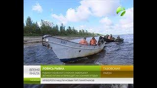 Рыбаки Тазовского района завершают летнюю путину и переходят на осенние угодья