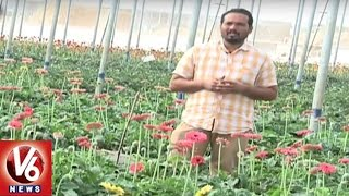Success Story Of Organic Farmer Sama Yellareddy | Sagubadi | V6 News