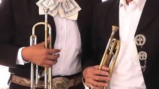 Mariachis celebran el Día del Músico en Coatzacoalcos