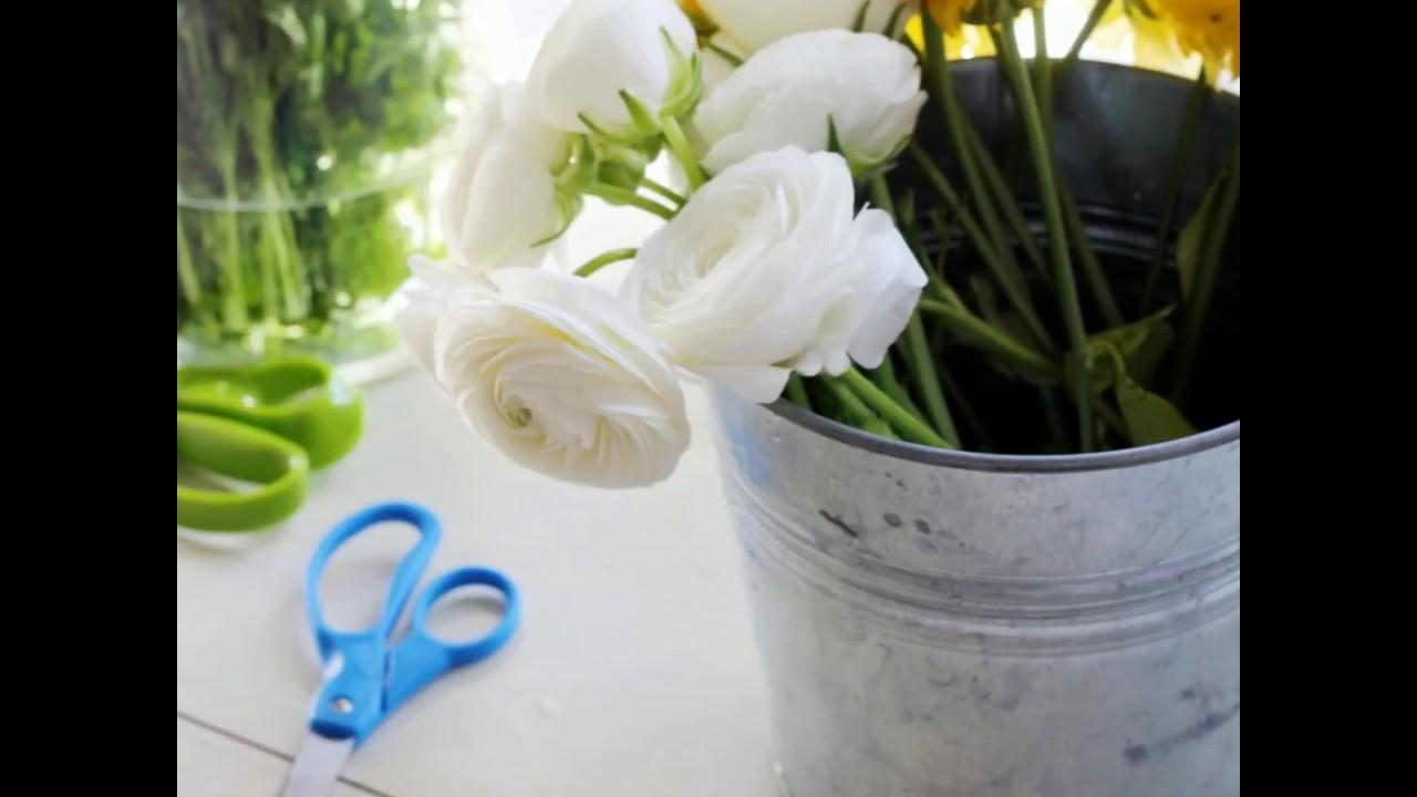 Comment Conserver Du Muguet En Vase 6 conseils pour conserver un bouquet - ooreka.fr