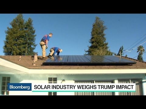 Mosaic CEO: Trump Won't Roll Back Solar Tax Credits