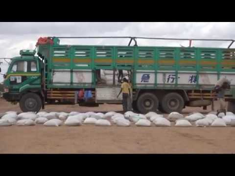 Emergency Food Distribution for Drought Effected Households at Boodhley Gabiley District Somaliland