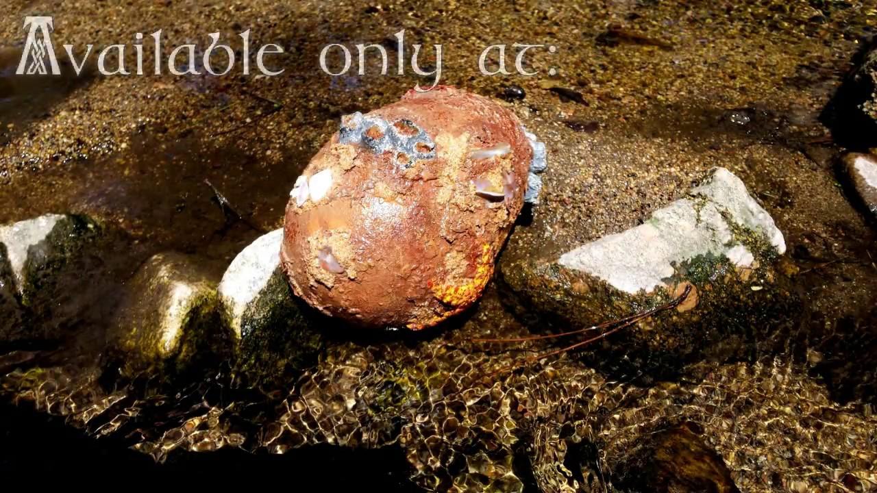 Waterhorse Egg Real Caught On Tape Youtube