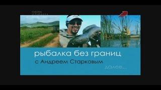 Рибалка без кордонів, ловимо далекосхідного змієголові