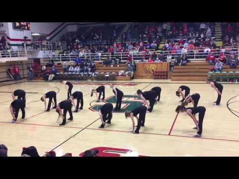Salem Community High School Dance Team 1/2016