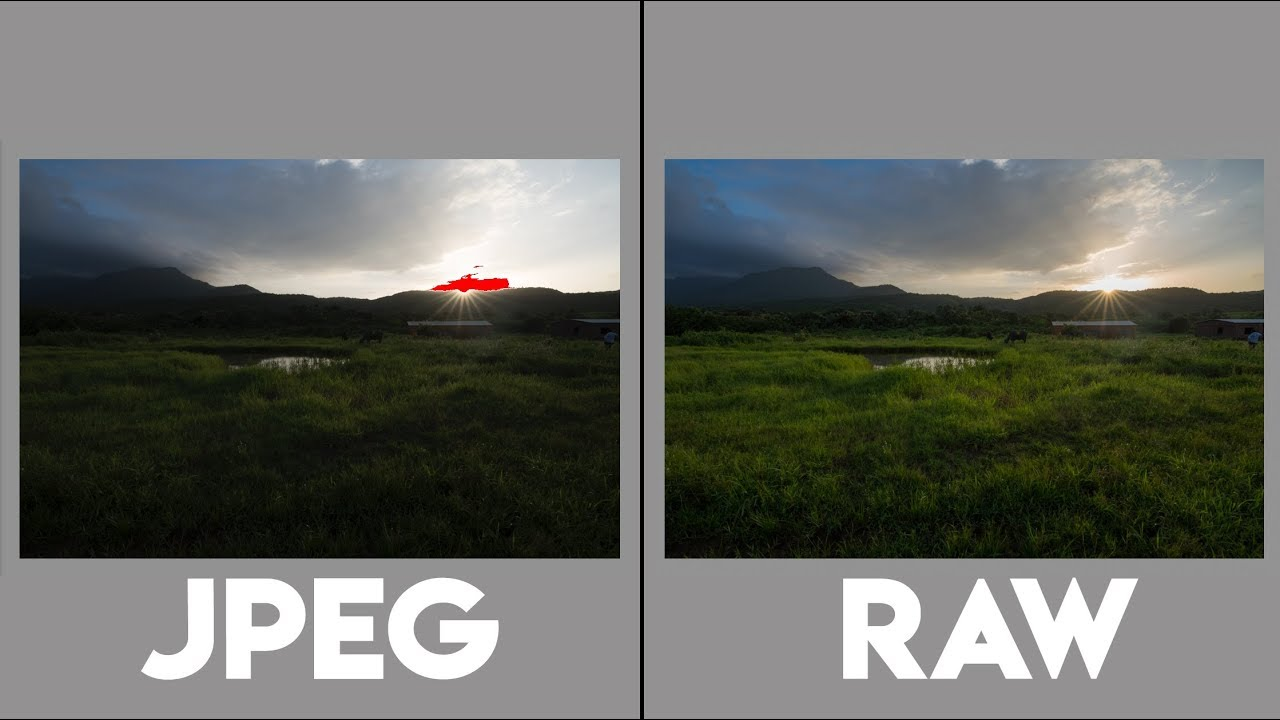 RAW vs JPEG Photography and Comparison! - YouTube