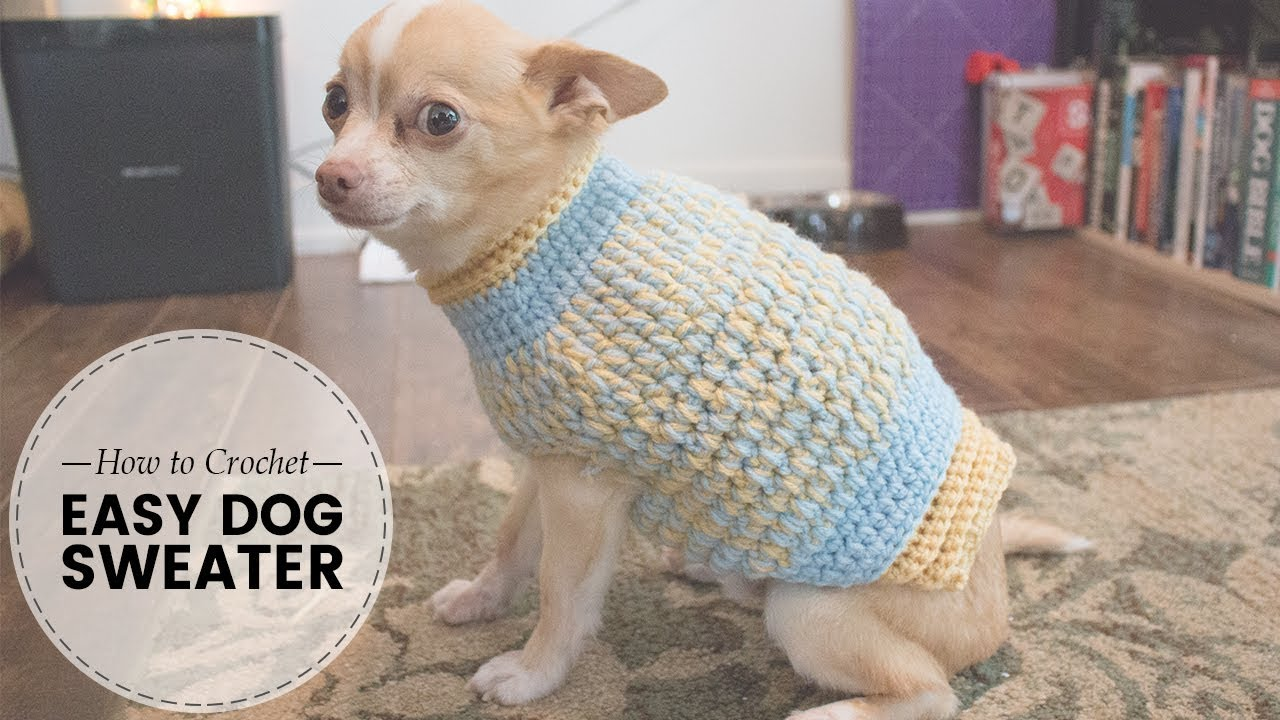 Easy Crochet Dog Sweater Part 1 Of 2 Last Minute Laura Youtube