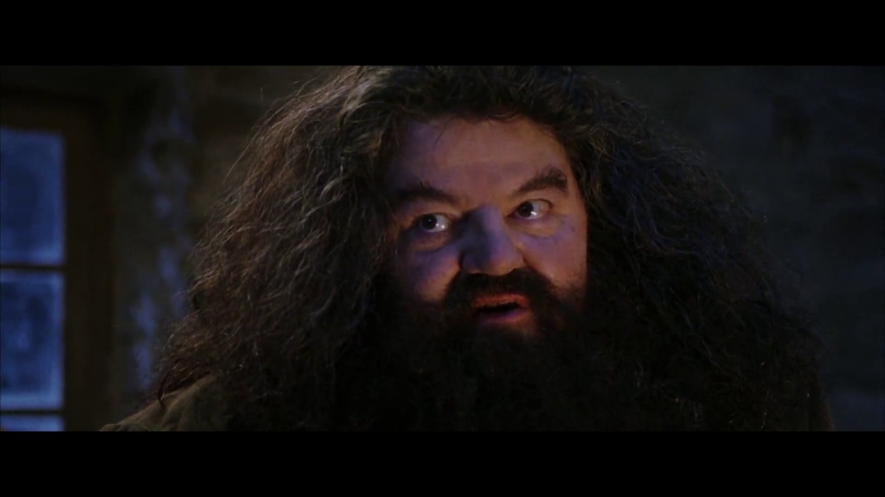 you re a wizard harry hagrid youtube