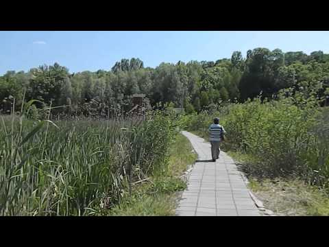 Comana Natural Park / Parcul Natural Comana