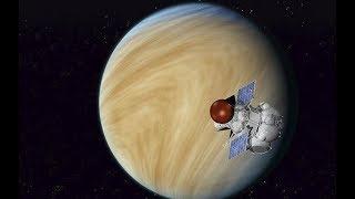 Учёные признали возможность жизни на  Венере. Фото странных обитателей  об на руженных на Венере.