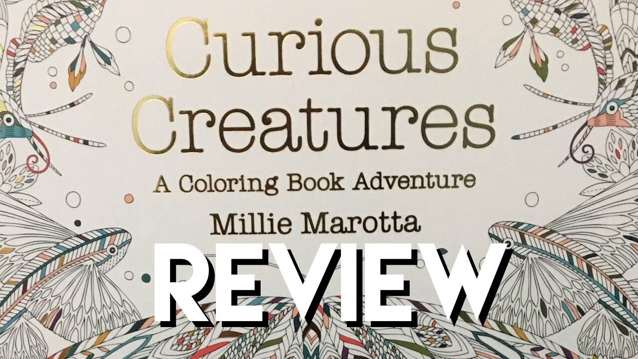 Curious Creatures By Millie Marotta Review And Flip Through