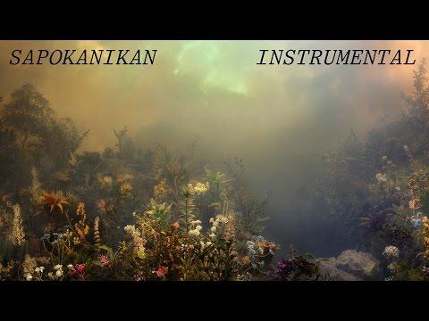Sapokanikan (instrumental cover) - Joanna Newsom