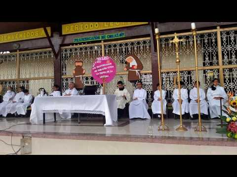 Tau Franciscana