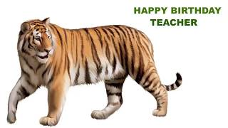 Teacher  Animals & Animales - Happy Birthday