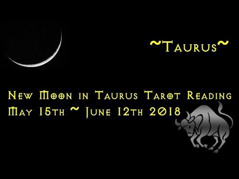 Taurus Sun & Moon ~ Taurus New Moon Tarot Reading