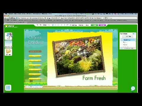 Livestream Embeded To Wix Website
