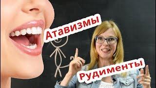 Биология   Рудименты и Атавизмы. Подготовка к ЕГЭ.