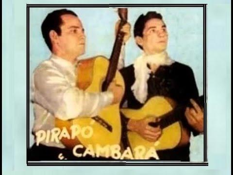 TATU NA TOCA - Pirapó e Cambará