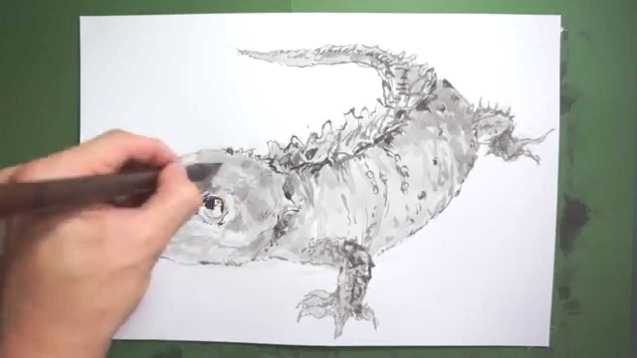 how to draw a lizard youtube