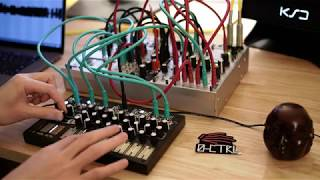 Make Noise 0-CTRL with Braids Mutable Instruments