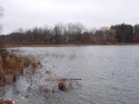 Stison Lake real estate - Call Russ at  313-310-9855 - White Lake Michigan