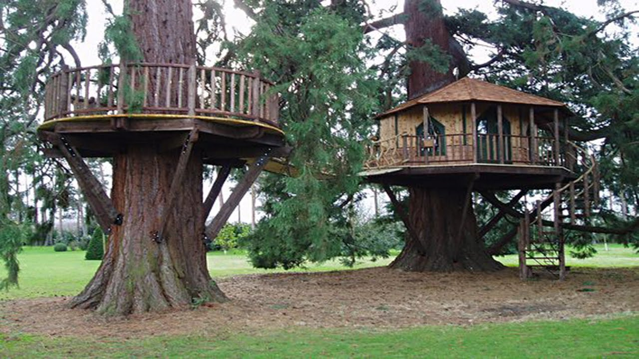 awesome fun tree houses youtube - Cool Kids Tree House