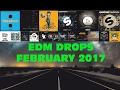 Top 20 EDM Drops (February 2017)[Week 3]