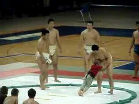 sumo vs fatboy