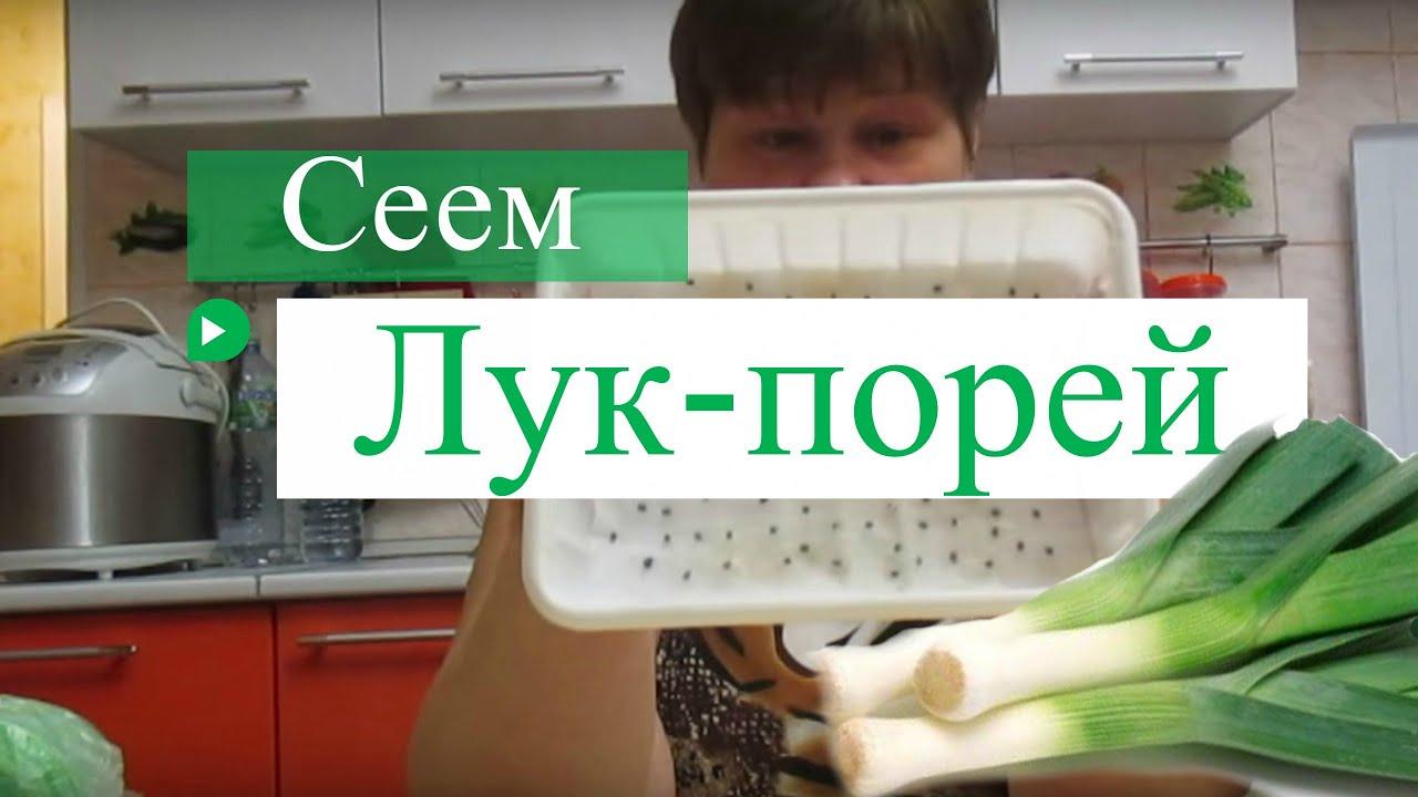 лук порей рецепты приготовления на зиму видео