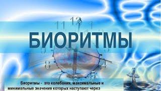 !!!Биоритмы Человека!!! !!!Bioritmy Cheloveka!!!