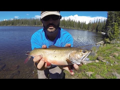 Flat Tops Wilderness Fishing Adventure