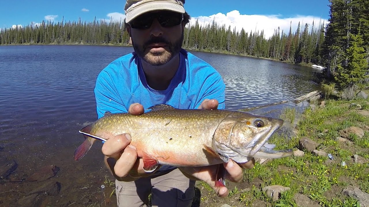 Flat tops wilderness fishing adventure youtube for Colorado out of state fishing license