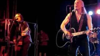 Elliott Murphy - Never say never again