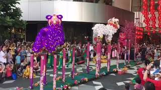 Tarian singa memperingati tahun baru cina GONG XI FA CAI