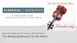 P. Tchaikovsky : The Sleeping Beauty, Op. 66. Waltz - ClassicalExperience