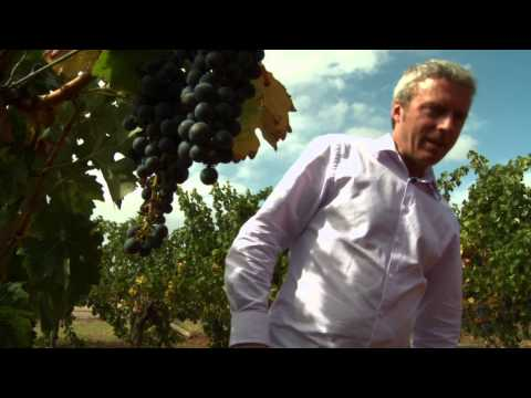Wine Sense Season 1 Episode 103 (Cabernet Sauvignon): A Brilliant Blend