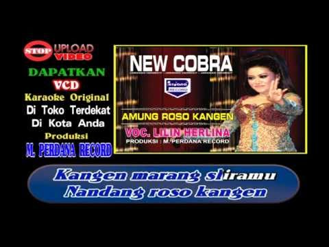 Lilin Herlina - Amung Roso Kangen - New Cobra [ Official ]