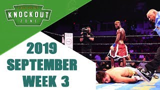 Boxing Knockouts | September 2019 Week 3