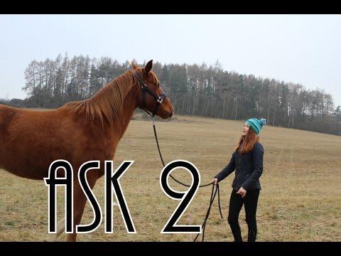 Ask #2 | Katy & Gamby