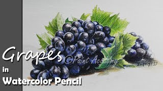 How to Paint Grapes in Watercolor Pencil