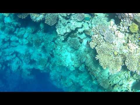 The Great Blue Hole, Dahab - Egypt || iCatch SPCA6330 Action Camera