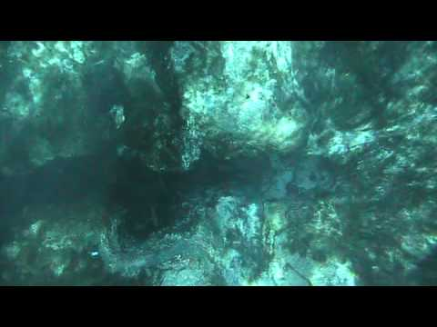 World Famous Glass Bottom Boat tours at Silver Springs Florida (part 1)