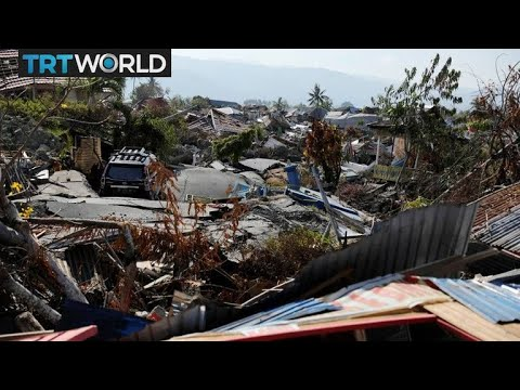 What does the world need to do to help Indonesia?
