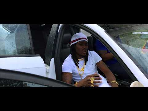 Youtube: Lion P: NEW SETTINGS (Video Clip)